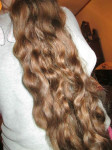 Young Virgin Hair